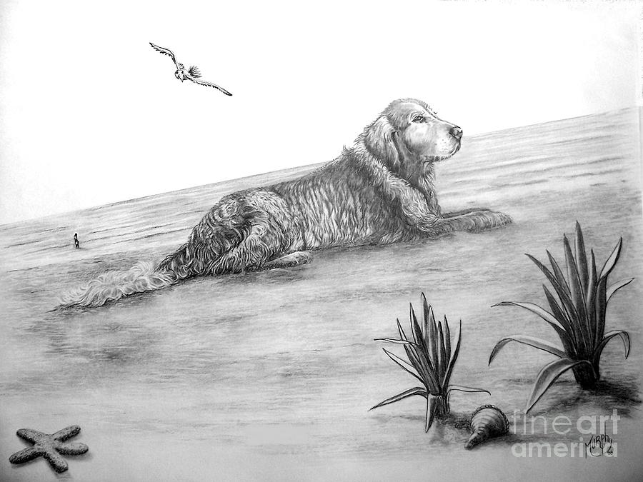 Dog Drawing - Day At The Beach by Murphy Elliott