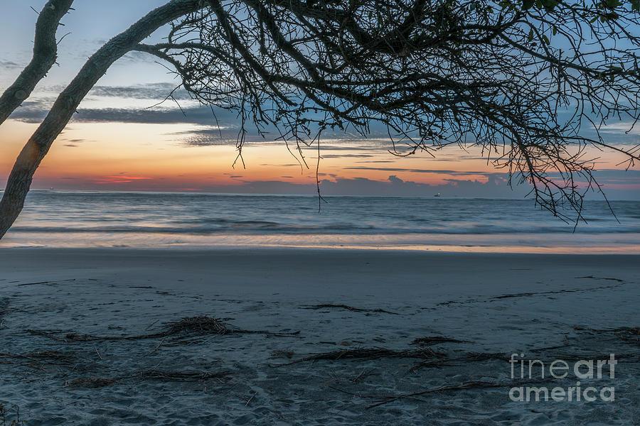 Deadwood Sunrise Over The Atlantic Ocean Photograph