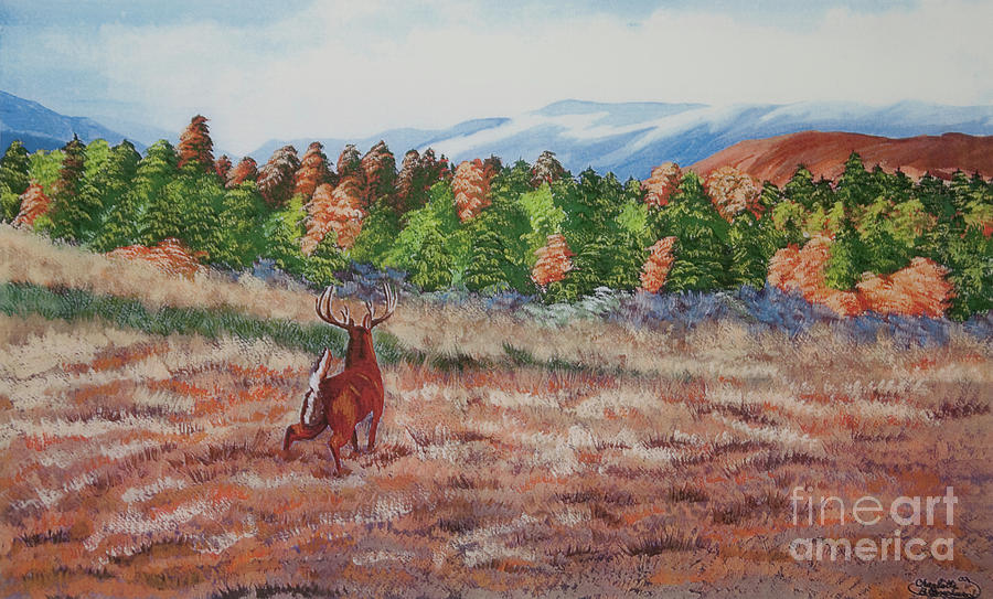 Fall Paintings Painting - Deer In Fall by Charlotte Blanchard