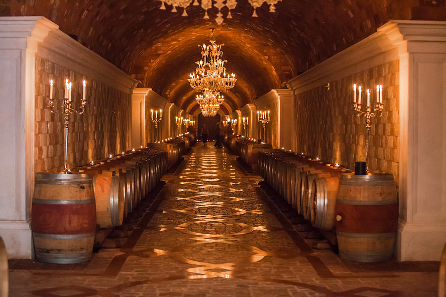 Winery Photograph - Del Dotto Wine Cellar by Scott Campbell