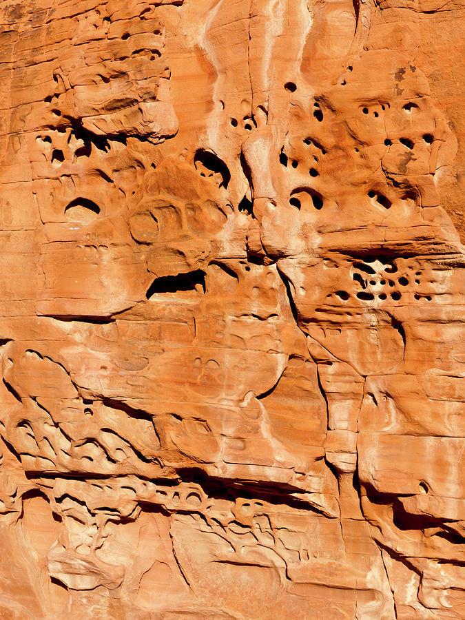 Desert Photograph - Desert Rock by Rae Tucker