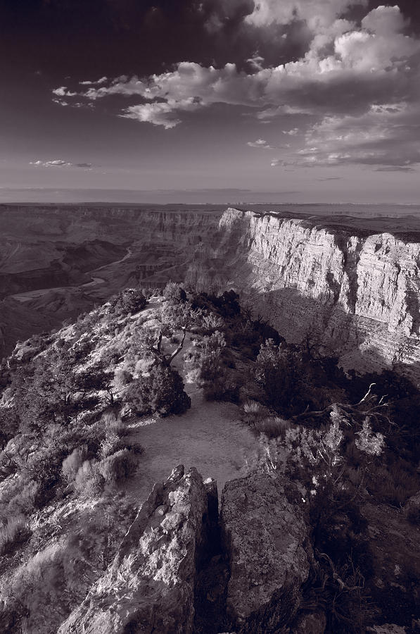 Desert View At Grand Canyon Arizona Bw Photograph