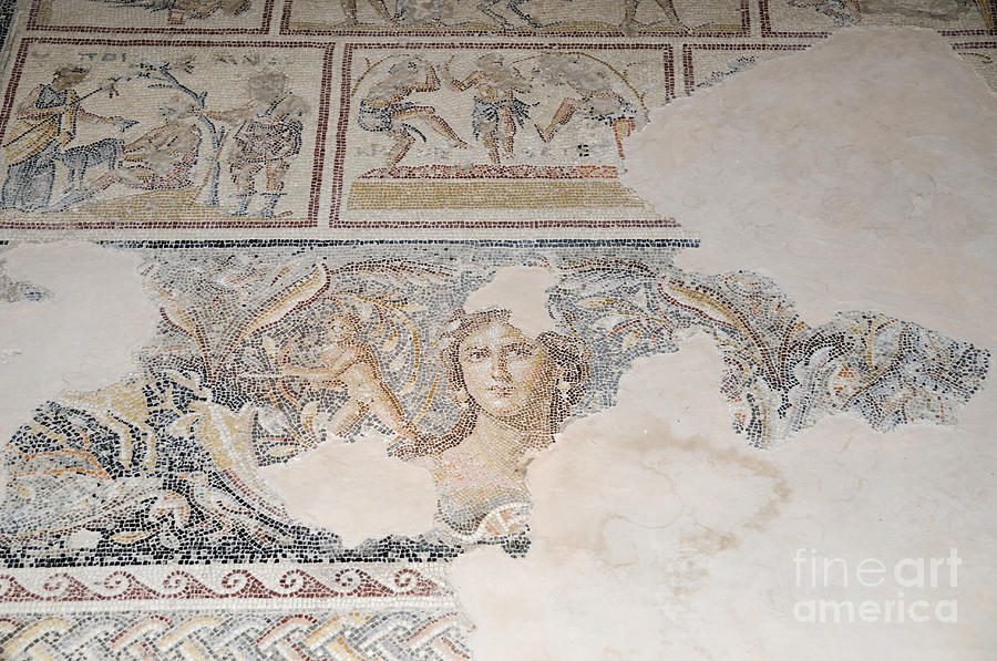 Dionysus Mosaic Mona Lisa Of The Galilee Photograph