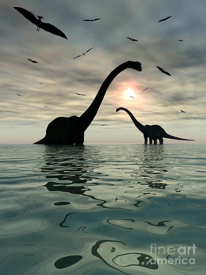 Digitally Generated Image Digital Art - Diplodocus Dinosaurs Bathe In A Large by Mark Stevenson