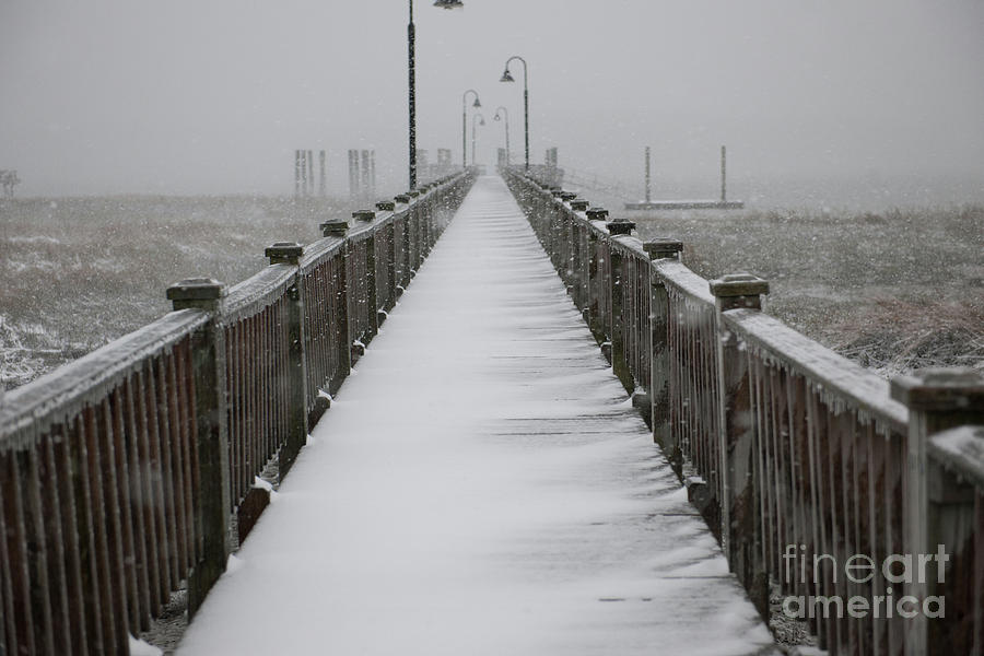 Dock Covered In Snow Photograph
