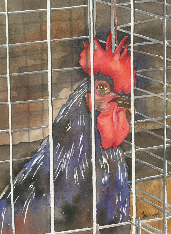 Rooster Painting - Doin Time by Marsha Elliott