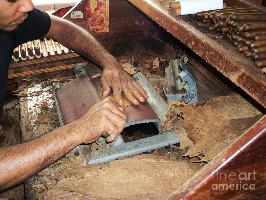 Dominican Cigars Made By Hand Photograph