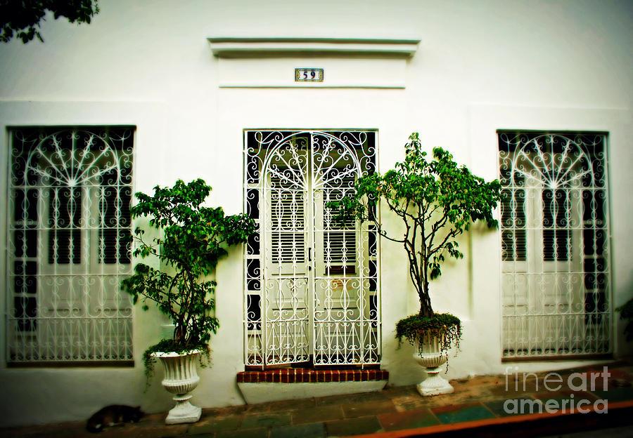 Door 59 Photograph