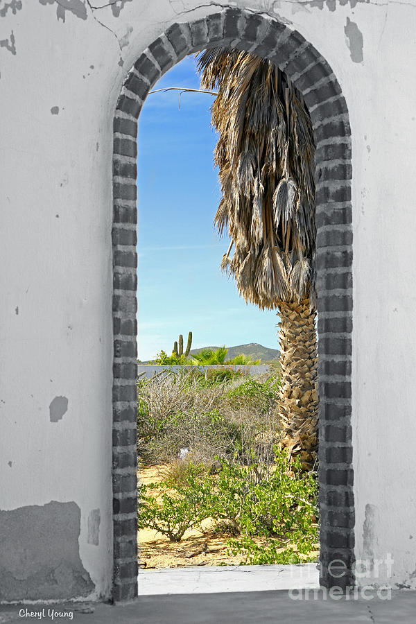 Brick Photograph - Doorway To The Desert by Cheryl Young