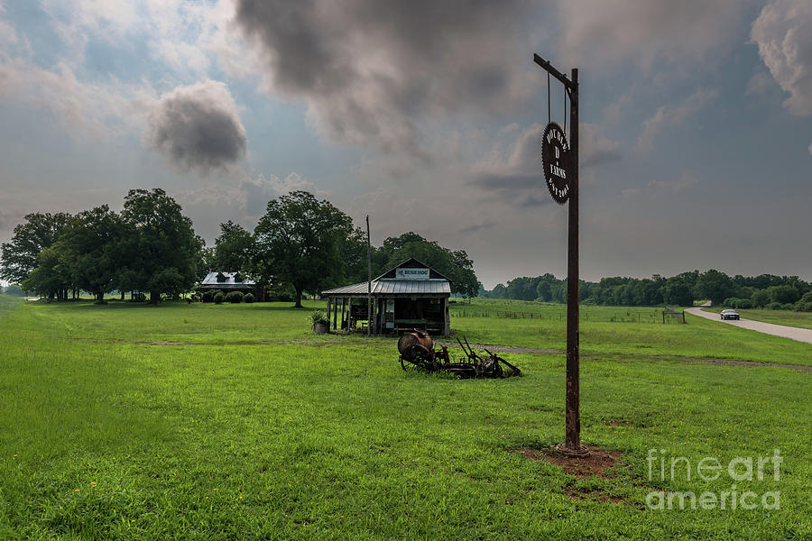 Double D Farm In Anderson South Carolina Photograph