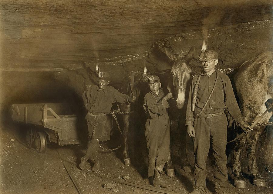 Drivers And Mules With Young Laborers Photograph