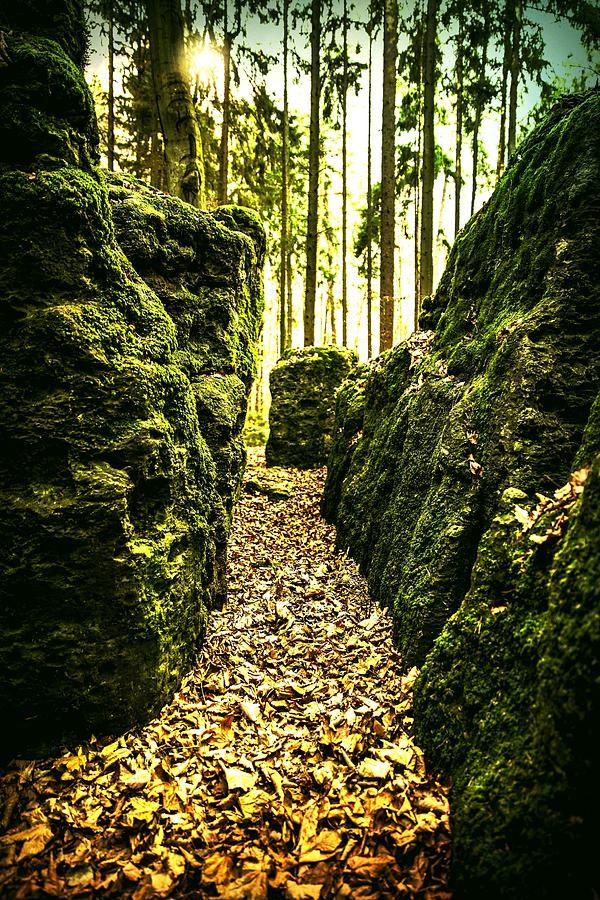 Druidenhain Wohlmann Gesees Photograph