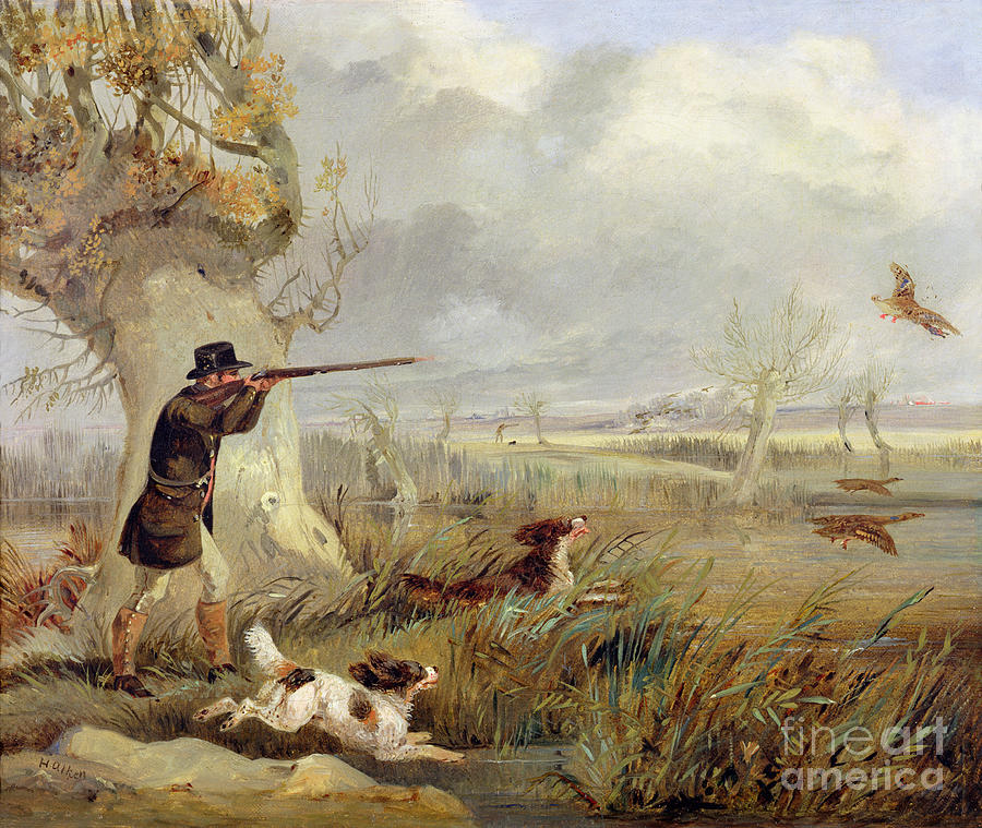 Duck Painting - Duck Shooting  by Henry Thomas Alken
