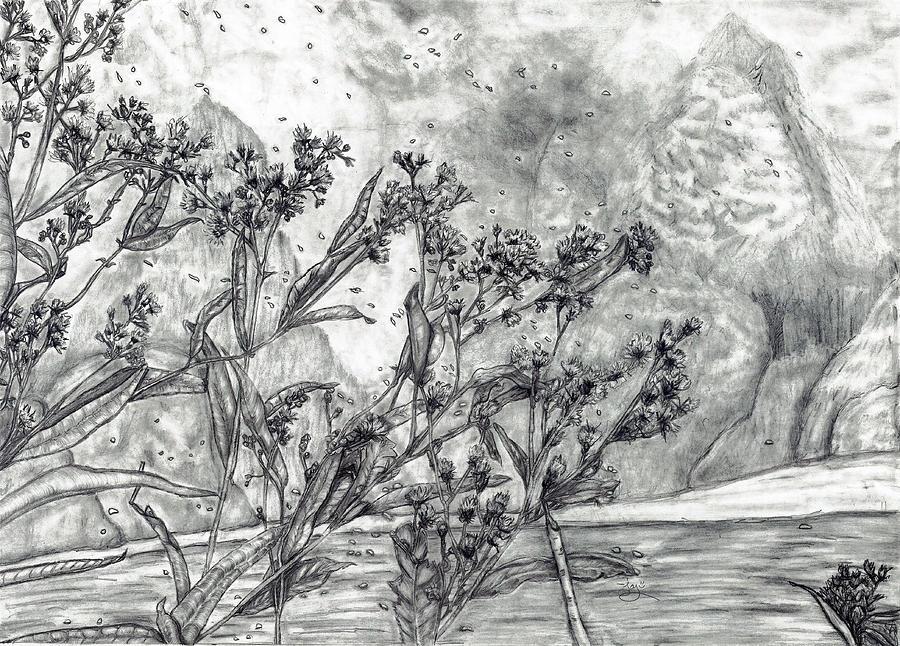 Dunbar Cave Clarksville Tn Drawing