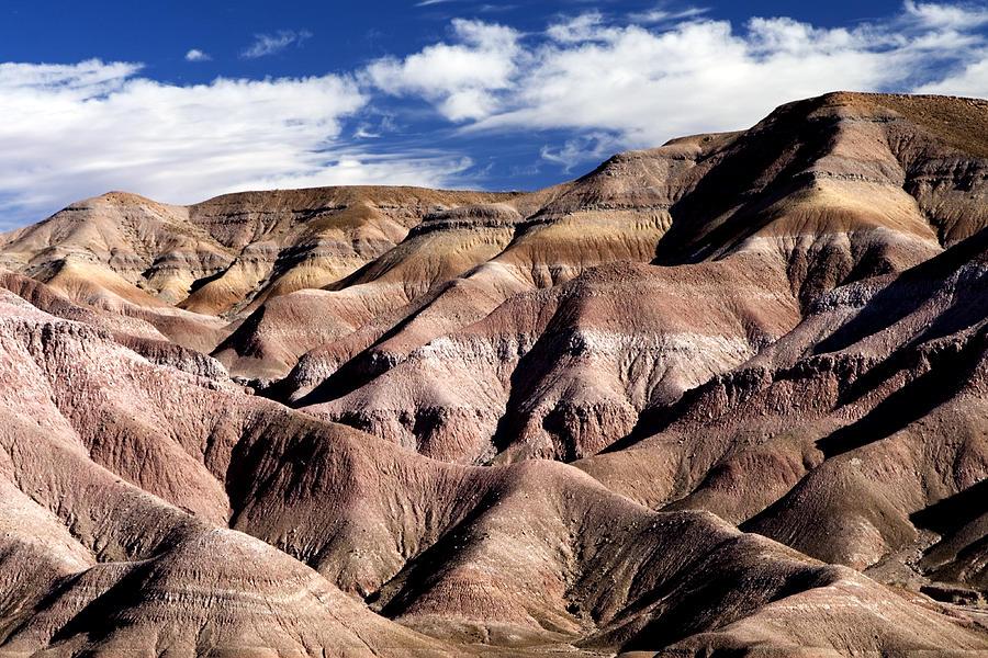 Dunes Of Arizona Photograph