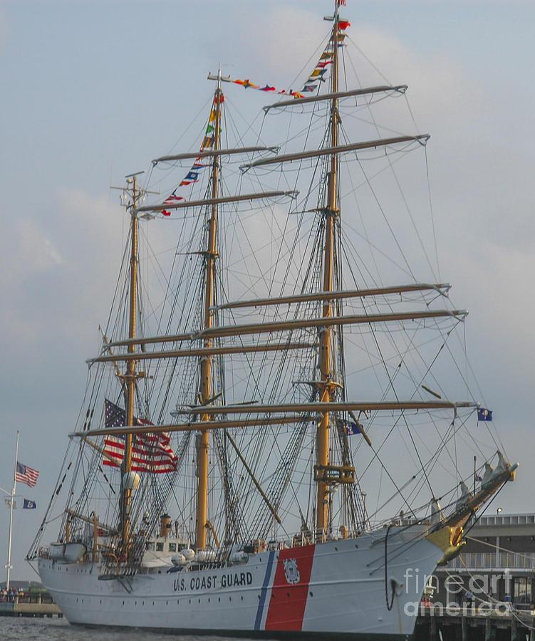 Eagle In Charleston Photograph