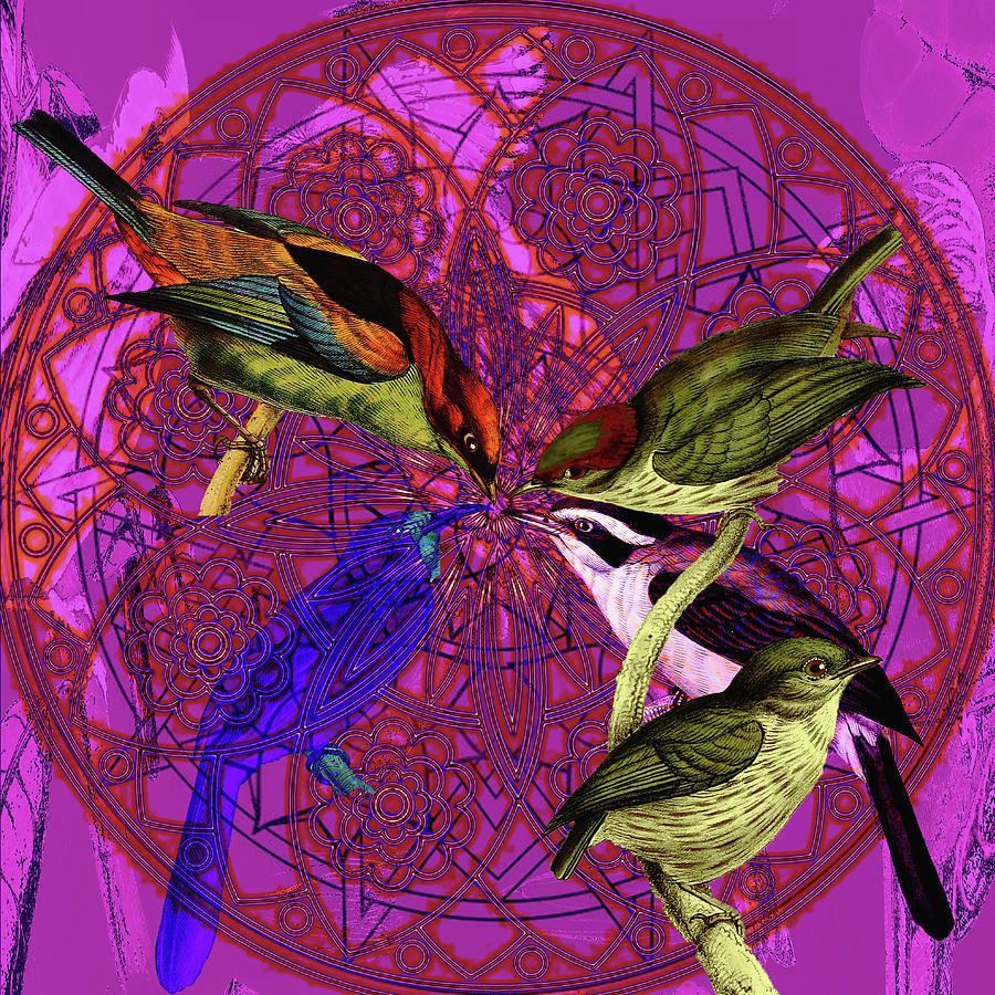 Early Bird Solar Energy Digital Art