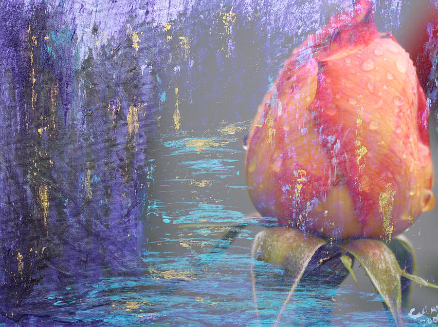 Rose Mixed Media - Early Morning by  Cid