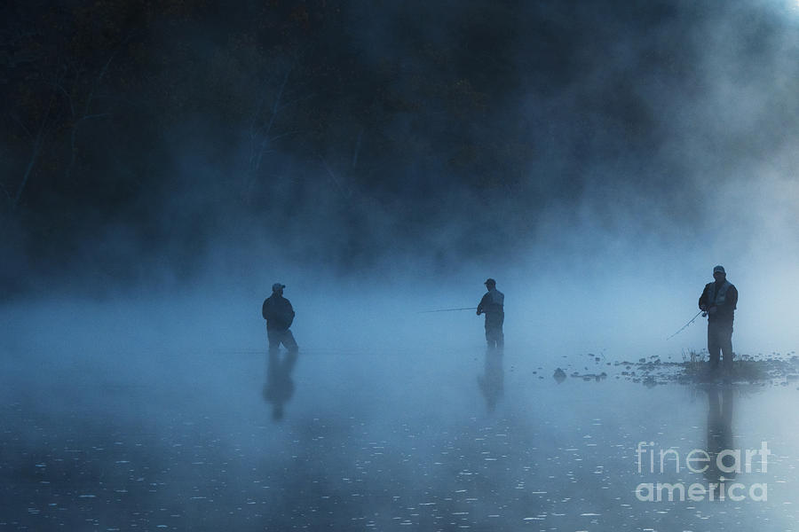 tamyra Ayles Photograph - Early Morning Fishing by Tamyra Ayles