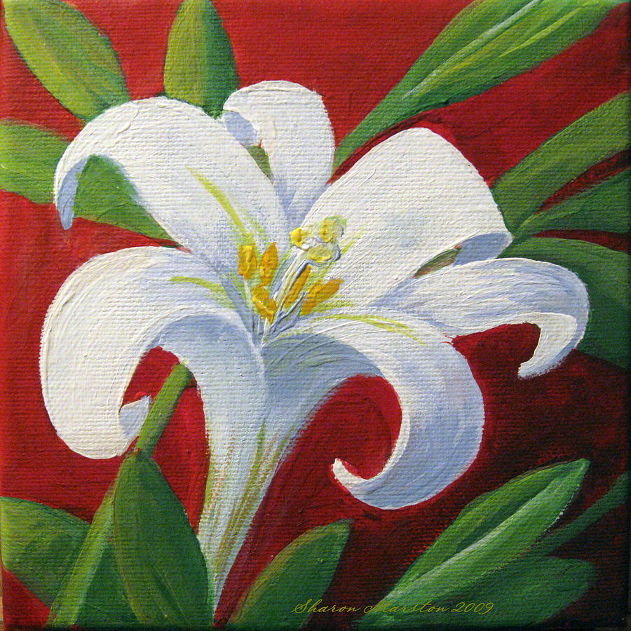 Easter lily painting by sharon marcella marston for What paint for canvas