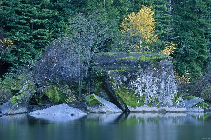 Eel River Camping Eel River - Benbow Cam...