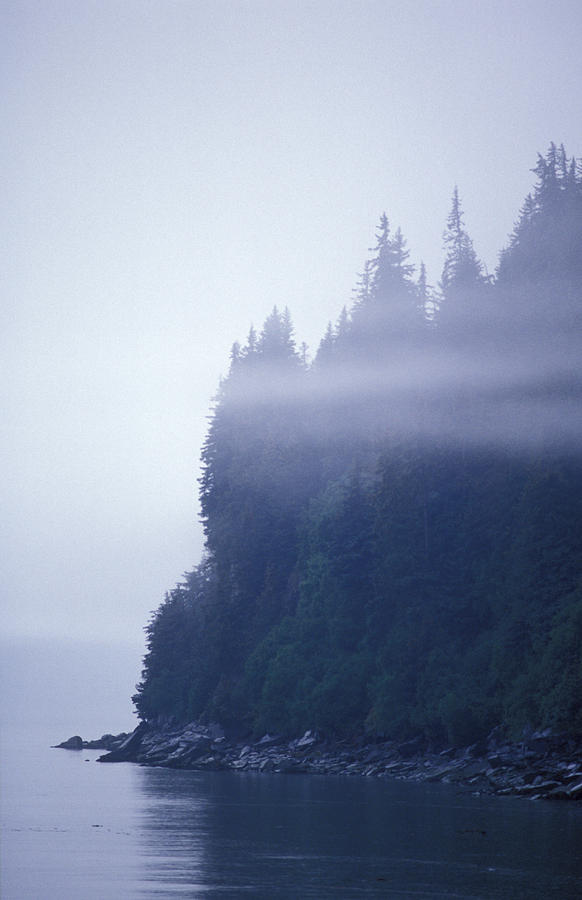 Shorelines Photograph - Eerie Seascape With Trees, Cliff by Rich Reid