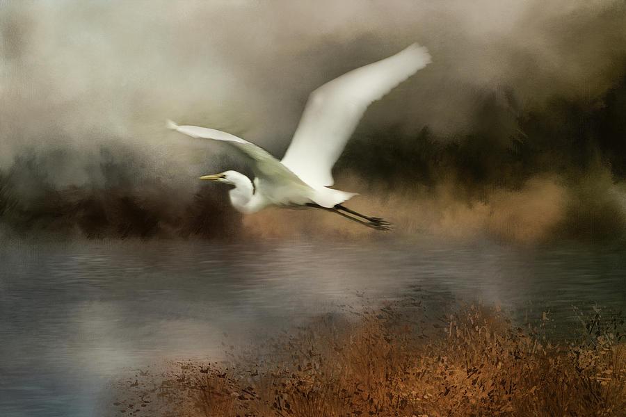 Egret Flight Digital Art