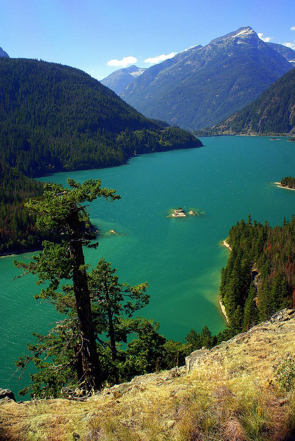 Lake Photograph - Emerald Lake by Marty Koch