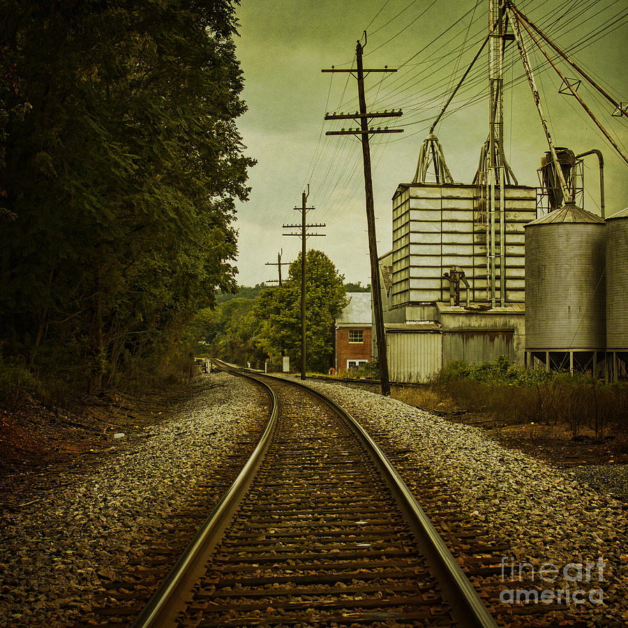 Train Photograph - Endless Journey by Andrew Paranavitana
