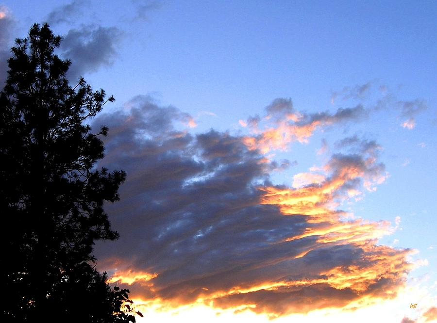 Sunset Photograph - Evening Color by Will Borden