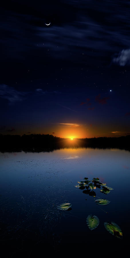 Evening Shades Photograph