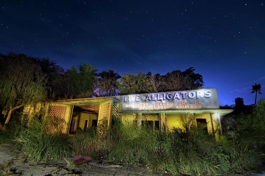 Everglades Gatorland Collectors Edition Photograph