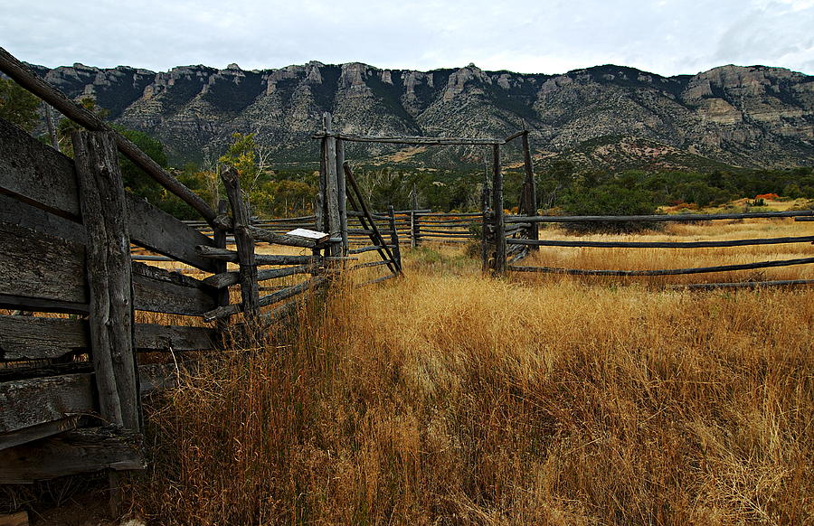 Bighorn Canyon National Recreation Area Photograph - Ewing-snell Ranch 1 by Larry Ricker