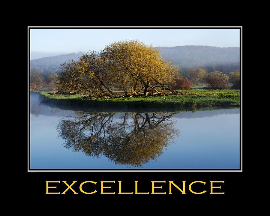 Excellence Inspirational Motivational Poster Art Digital Art