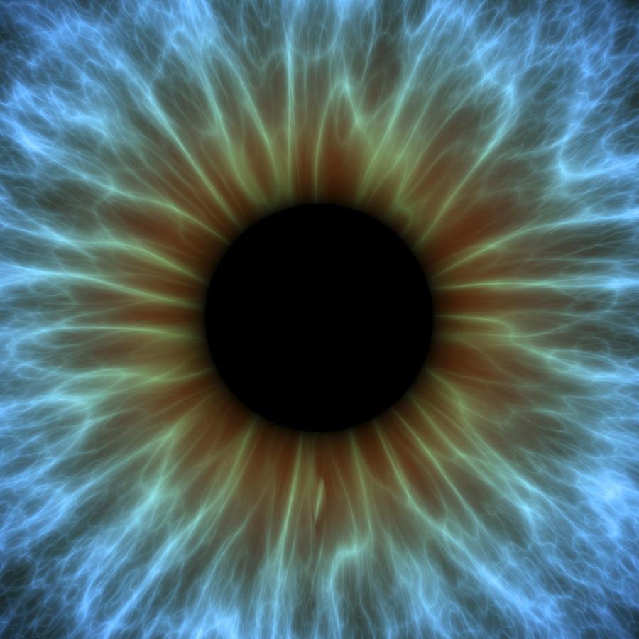 Anatomy Photograph - Eye, Iris by Pasieka