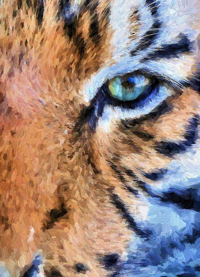 Tiger Photograph - Eye Of The Tiger by JC Findley