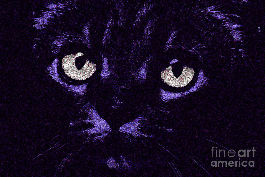 Fine Art Cat Photograph - Eyes Straight To The Heart by Andee Design