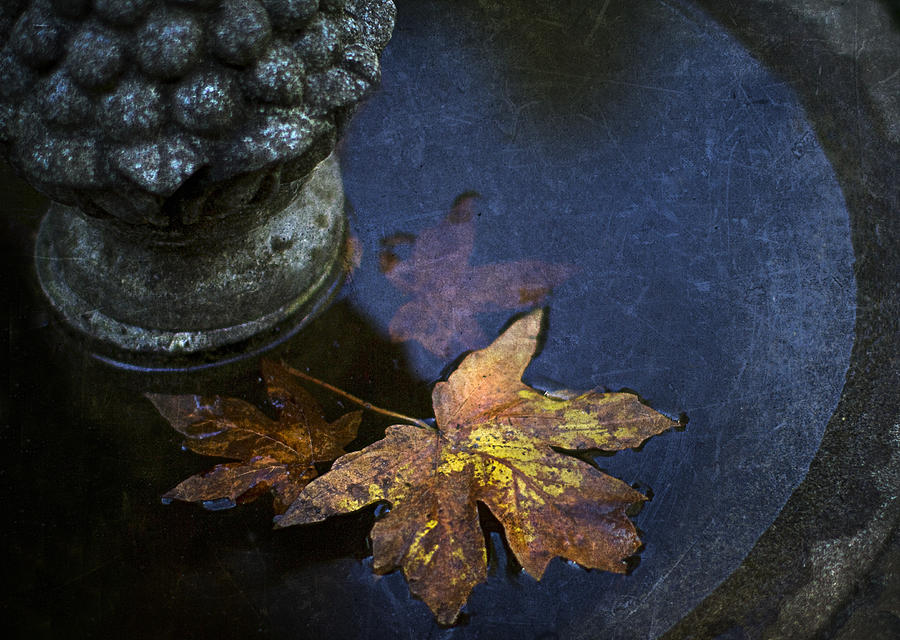 Fountain Photograph - Fall At The Fountain by Rebecca Cozart