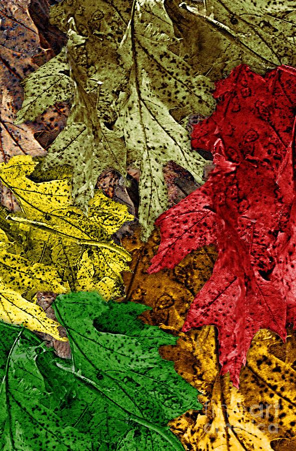 Digital Art Digital Art - Fall Down by Tom Romeo