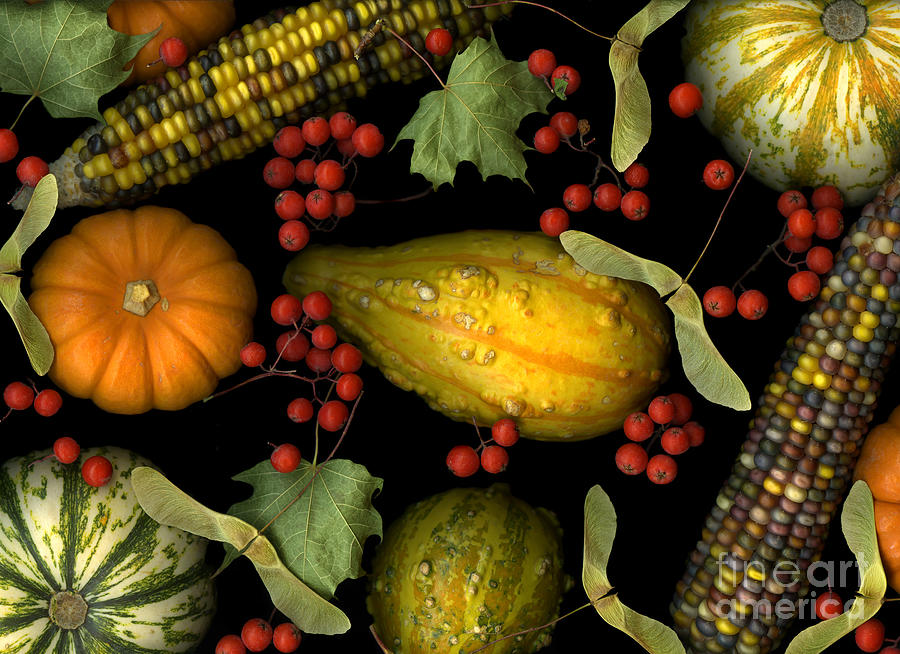 Slanec Photograph - Fall Harvest by Christian Slanec