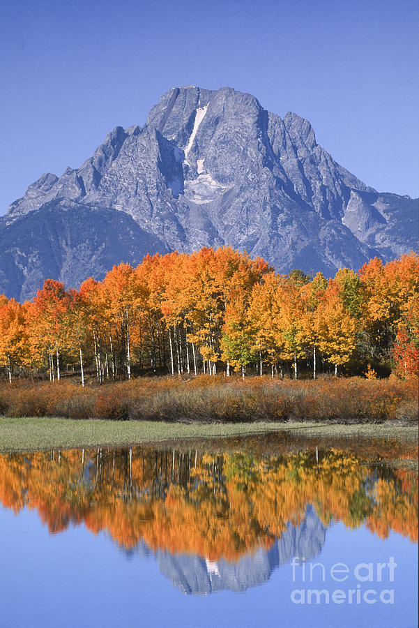 Grand Tetons Photograph - Fall Reflection At Oxbow Bend by Sandra Bronstein