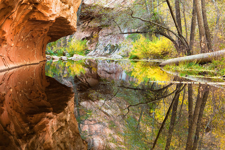 Canyon Photograph - Fall Reflections by Carl Amoth