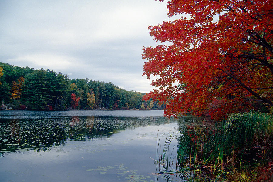Landscape Photograph - Fall Scenic Little Long Pond Harriman State Park New by George Oze