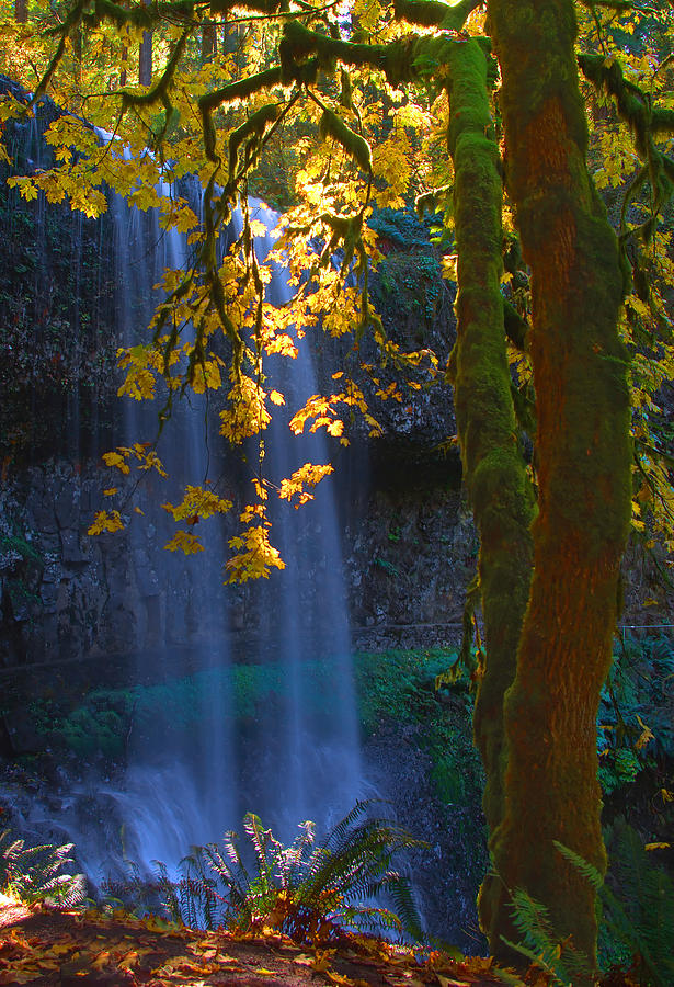 Water Fall Photograph - Falls In The Fall by Dale Stillman