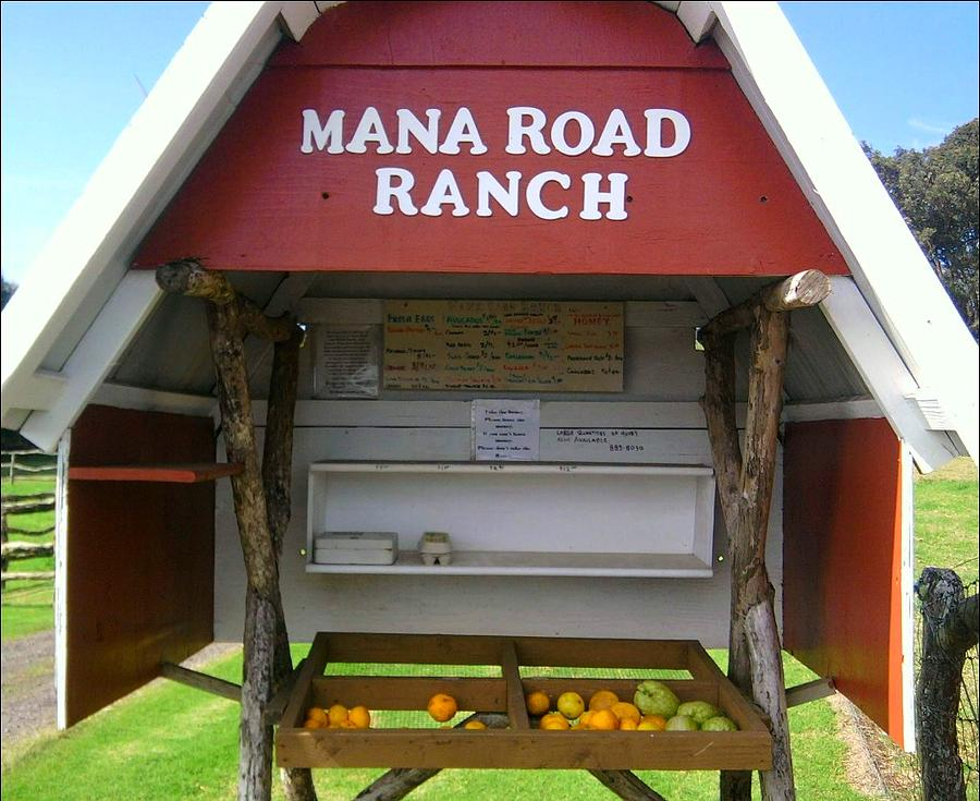Mana Ranch Photograph - Farm To Table by Charles  Jennison