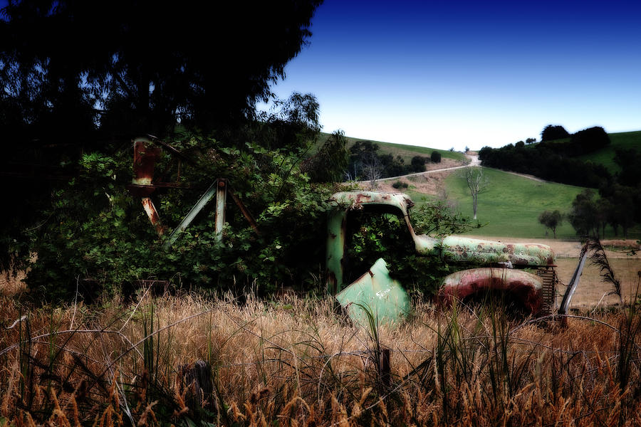Ute Photograph - Farmers Garden by Tim Nichols