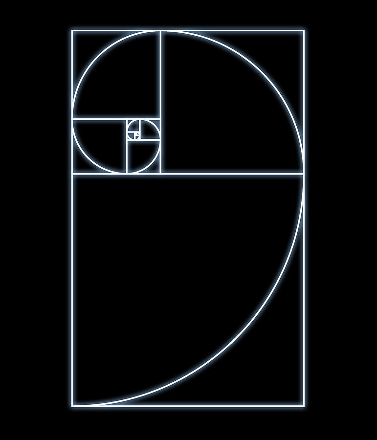 Fibonacci Spiral, Artwork Photograph by Seymour