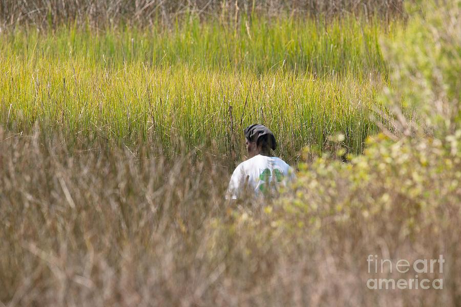 Finding Spartina Grass Photograph