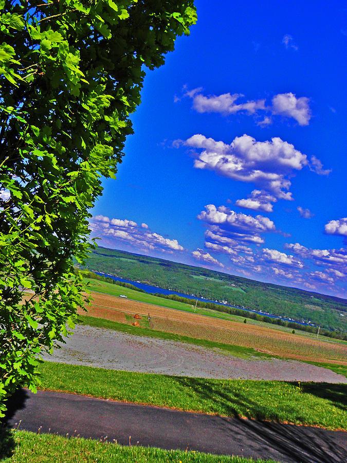 Hillside Photograph - Finger Lakes Country by Elizabeth Hoskinson