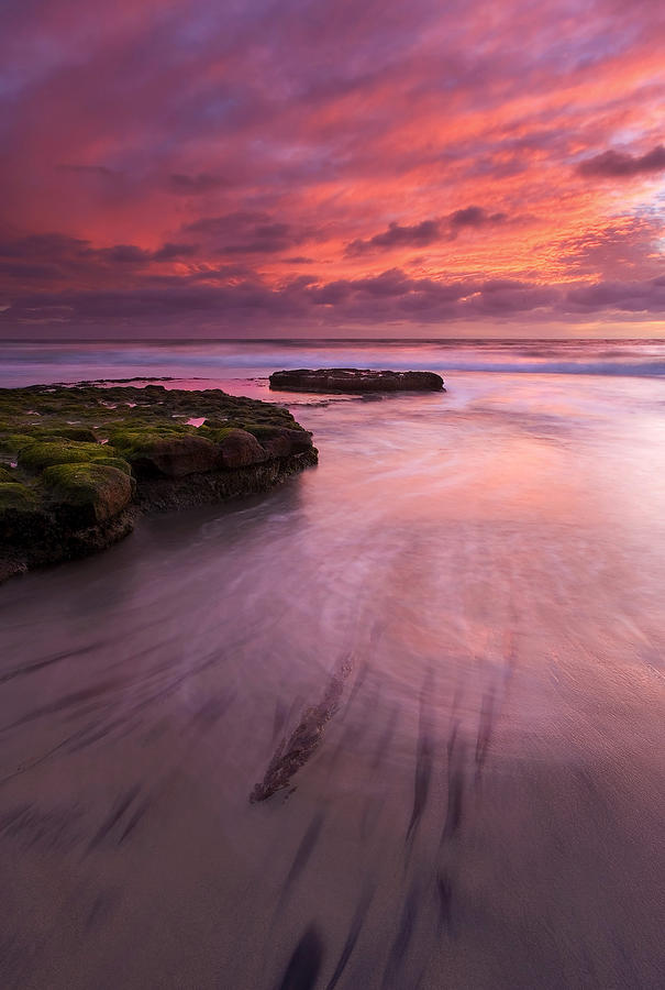 Sunset Photograph - Fingers Of The Tide by Mike  Dawson
